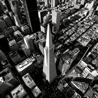 An aerial photo of the Transamerica Pyramid,  one of San Francisco's iconic skyline buildings